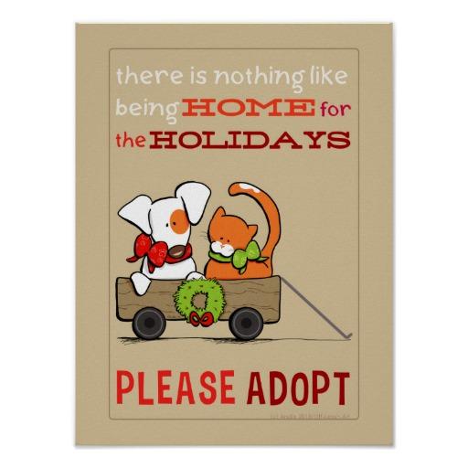 Holiday Pet Adoption