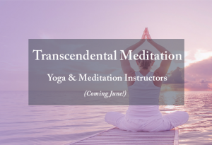 Transcendental Meditation, yoga and meditation instructors