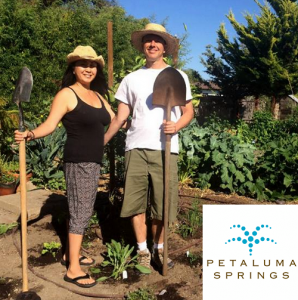 petaluma springs - eco garden